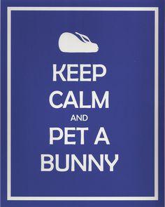 Keep Calm and Pet A Bunny 7x5 Bunny Rabbit Print. $15.00, via Etsy.