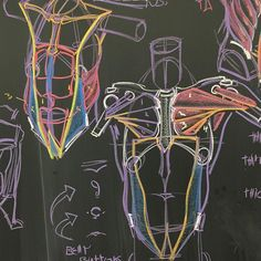@willwestonstudio More anatomy stuf for Inventive Drawing at ArtCenter in Pasadena, CA. Most of the blackboard actually dealt with body mechanics (how the body moves and how to set it up with volume and easily), but anatomy always helps. I do simple anatomy in my class. We have an anatomy class in the department as well. #drawingworkshop #dreamworkstv #drawingskills #drawingskillz #drawinganatomyandart #artnyc #artworkshop #anatomydrawing #animationguild #animationstudent #comics #croquis…