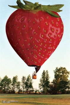 Strawberry hot-air balloon ride anyone?