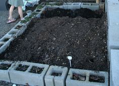 How to build a raised vegetable garden bed? (costs of each material such as wood, brick, and cinder blocks)