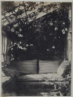 Un bout de la serre de Marine Terrace, circa 1853,  Vacquerie Auguste (1819-1895), photographe, écrivain et journaliste  winter garden memories from times gone by