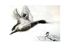 """""""Vliegende eend"""" Houtskool en inkt"""" door Lida Meines"""