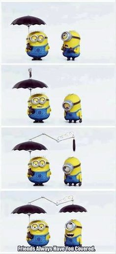 minions with sayings | True #minion friends! | Quotes and random stuff...