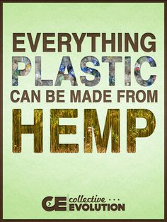 Everything plastic can be made from hemp.  Hemp plastic can completely replace oil based plastic materials that we are using today that contain large amounts of dangerous chemicals such as the very well known Bisphenol A. If all our plastics were made fro