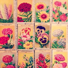 Vintage floral packets for party favors. I found mine on ebay