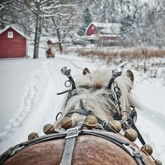 in a one-horse open sleigh!
