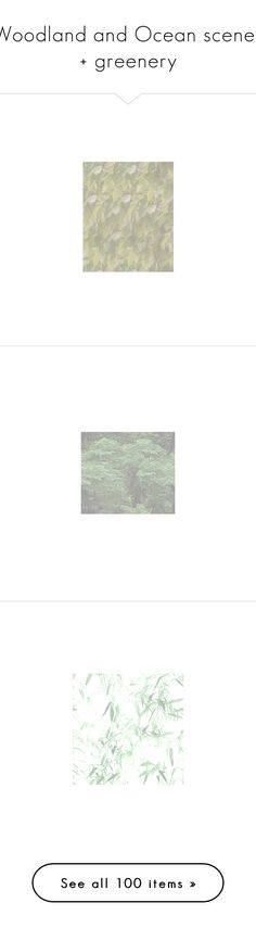 """""""Woodland and Ocean scenes + greenery"""" by jsh257 ❤ liked on Polyvore featuring backgrounds, green, fondos, flowers, texture, abstract, art, autumn, photos and pictures"""