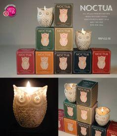 Noctua Owl Candle Range