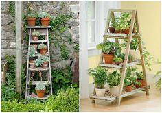 Jardín vertical | Decoración