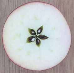 The God Venus was often associated with the apple. When you slice an apple in half, the seeds form a pentagram. The same as the planet Venus forms when orbiting the earth. Kitchen Witchery, Apple Theme, Cross Section, Apple Seeds, Beltane, Pentacle, Patterns In Nature, Food Art, Gardens