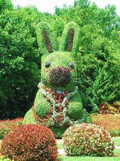 Live #Bunny #Sculpture - #art #flowers #gardens #topiary ✿ڿڰۣ--