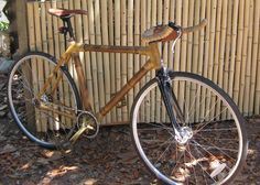 Bikes made of bamboo, that giant member of the glass family, for the frame of the bicycle. It is fast growing, renewable, strong and one of the first attempts to find something lighter than steel to serve the same function.
