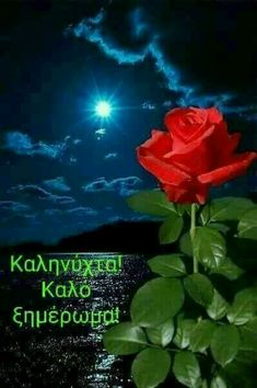 Greek Quotes, Greek Sayings, New Month Greetings, Good Night, Good Morning, Beautiful Pink Roses, Greek Language, Beautiful Pictures, In This Moment