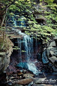 Albion Falls and Lower Westcliffe Falls – Waterfalls Hamilton, Ontario Albion Falls, Pictures Of Beautiful Places, My Father's World, Hamilton Ontario, Beautiful Waterfalls, Hiking Trails, Nature Photos, Rivers, Niagara Falls