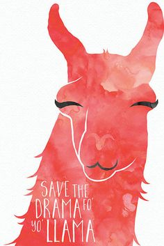 This cheeky art print. | 23 Things You Need If You Secretly Have A Thing For Llamas