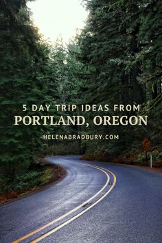 Oregon Vacation, Oregon Road Trip, Oregon Travel, Travel Usa, Oregon Hiking, Oregon Coast Roadtrip, Hikes Near Portland, Moving To Portland, One Day Trip