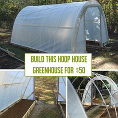 diy greenhouse Archives - Off Grid World Diy Greenhouse Plans, Greenhouse Supplies, Greenhouse Growing, Greenhouse Wedding, Homemade Greenhouse, Greenhouse Gardening, Small Greenhouse, Backyard Greenhouse, Portable Greenhouse