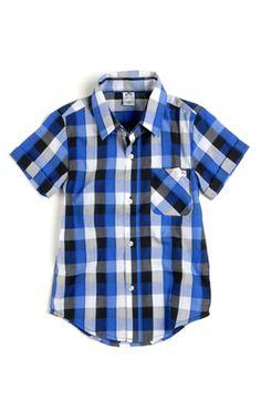 Boys Appaman Tilden Shirt in Check Print