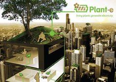 Start up plant E maker van elektriciteit uit planten