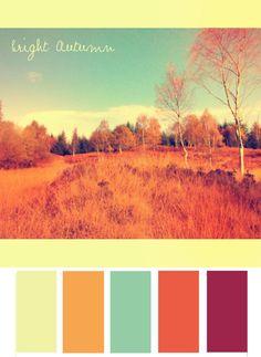 Bright Autumn Colour Palette