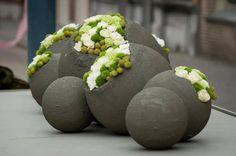 Esferas - Design, Estilo e Funcionalidade | + Plantas