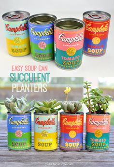Easy Upcycled Soup Can Succulent Planters   Club Chica Circle - where crafty is contagious