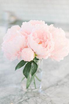 Pretty pink peonies flower arrangement in a glass vase. Bouquet of pink peonies. Flower Arrangements Simple, Flower Vases, Peony Arrangement, Fresh Flowers, Beautiful Flowers, Light Pink Flowers, Simple Flowers, Beautiful Space, Diy Flowers