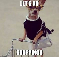 Who hasn't been shopping to The Black Orchid and Toy Black Interiors massive SALE ❓ . You are so missing out. Only 3 magical words being said today . Shopping Humor, Shopping Quotes, Go Shopping, Memes Humor, Funny Memes, Singapore Fashion, Gifs, Black Orchid, Money Quotes