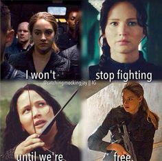 Tris and Katniss