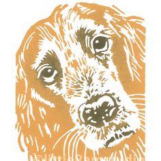 Golden Cocker Spaniel Dog - Linocut Print