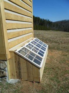 Extend Your Garden's Growing Season: DIY Mini-greenhouse