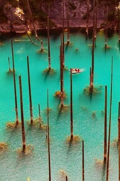 The submerged forest of Lake Kaindy, Almaty, Kazakhstan.