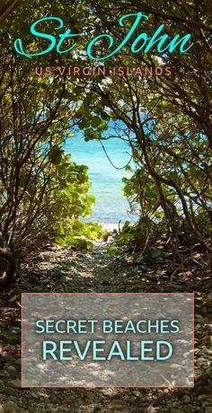 Secret Beaches on St John - On-Island Times US Virgin Islands St Thomas Virgin Islands, Us Virgin Islands, St Thomas Vacation, Saint John Island, Serenade Of The Seas, Virgin Islands Vacation, St Thomas Usvi, North Shore Beaches, Secluded Beach