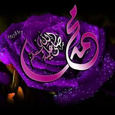 DesertRose_محمد صلى الله عليه وسلم