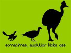 Sometimes, evolution kicks ass