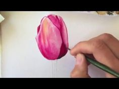 How to paint Queen of the Night Tulips in watercolour by Billy Showell - YouTube