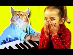 KIDS REACT to Keyboard Cat!! Idk,.. i watch these all the time haaa :)