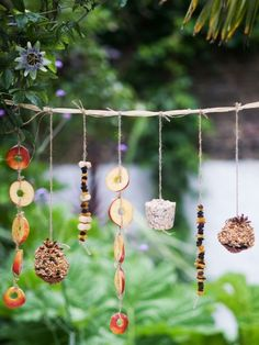 Attract a variety of wild birds to garden with handmade bird food garland. Fun Kids Gardening Projects To Do This Spring