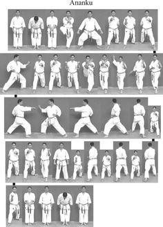 Mobiles, Shotokan Karate Kata, Karate Dojo, Goju Ryu, Martial Arts Techniques, Red Hood, Bruce Lee, Tai Chi, Self Defense