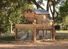 Round-Top Backyard Chicken Coop   Urban Coop Company   Urban Backyard Chicken Coops