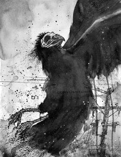Valravn (War raven): A raven that has eaten of the dead on a battlefield and has gained human intelligence that way. If they drink the blood of a newborn boy, they will be able to turn into a knight, or as here, a half wolf half raven creature. Extreamly evil and dangerous. Can be befriended if you give it your firstborn.