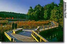 South Natick: Broadmoor Wildlife Sanctuary - walking trails