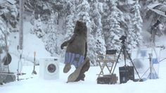 Snow fun while shooting a commercial (Huge Bear Surprises Samsung Crew on EcoBubble washing machine Photo Shoot in BC) Funny Commercials, Funny Ads, You Funny, Funny Stuff, Funny Shit, Marketing, Samsung Washing Machine, Machine Photo, Commercial Ads