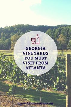 North Georgia Vineyards you MUST VISIT from Atlanta - Great Atlanta Day Trips! http://www.afriendafar.com