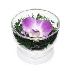 Цветы стабилизированные в стекле