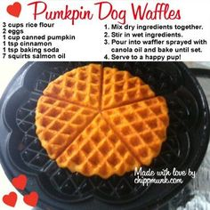 Healthy Dog Treats Pumpkin Dog Waffles ~ Healthy treat recipes for your furry friends~ Puppy Treats, Diy Dog Treats, Homemade Dog Treats, Dog Treat Recipes, Healthy Dog Treats, Dog Food Recipes, Waffle Recipes, Paleo Recipes, Healthy Waffles