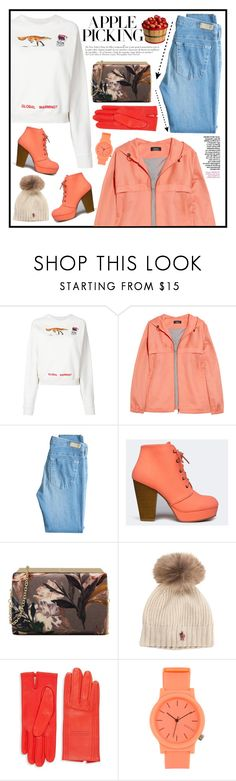 """the fox"" by uitwaaien ❤ liked on Polyvore featuring Off-White, A.P.C., AG Adriano Goldschmied, Anja, Qupid, Nine West, Moncler, Hermès, Komono and contest"