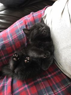 Jelly Beans on my feets! ....... https://www.facebook.com/iizcat/photos/a.677786308954917.1073741827.675731812493700/1794691723931031/?type=3&theater