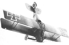 Roland D.ll reportedly crashed by Rudolf Nebel.