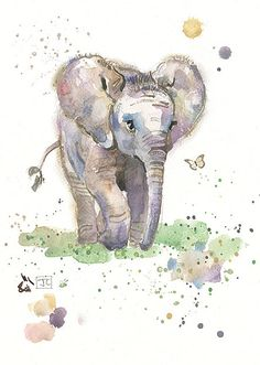 Baby Elephant by Jane Crowther, Bug Art Watercolor Animals, Watercolor Art, Elephant Watercolor, Animal Paintings, Animal Drawings, Baby Elefant, Elephant Love, Elephant Design, Baby Elephant Drawing
